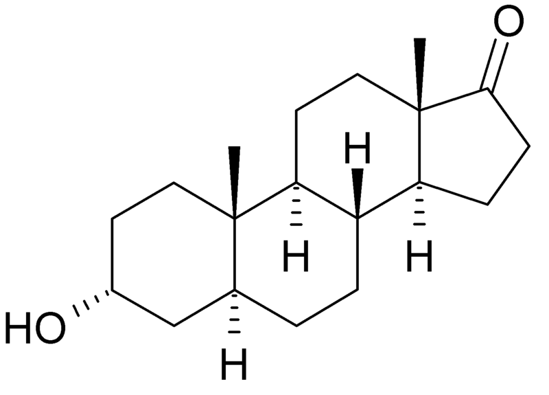 Biotredny - androsteron