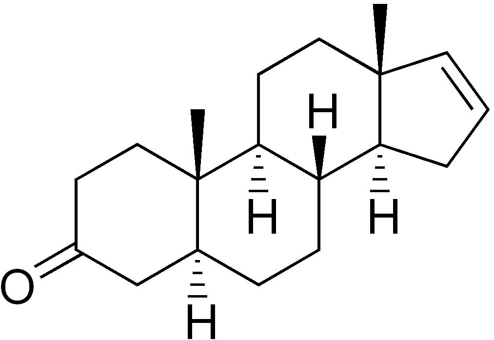 Biotrendy - androstenon