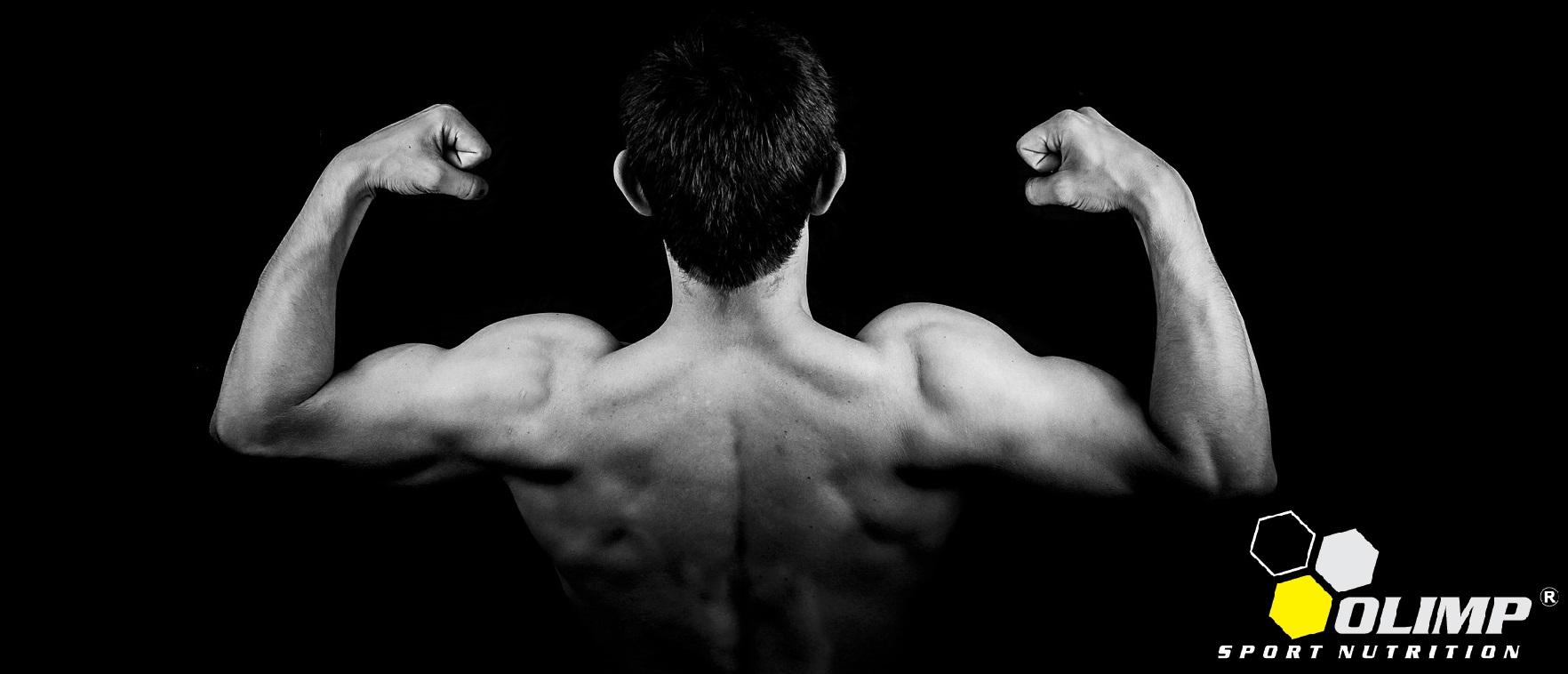 HMB 625mg - tabletki na przyrost masy mięśniowej