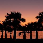 BioTrendy - Dieta South Beach