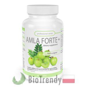BioTrendy - Amla Forte Plus PL - tabletki na odchudzanie - tabletki odchudzajace