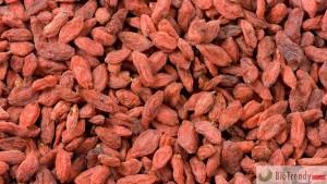 BioTrendy - Goji Berry - Kolcowój chiński (Lycium chinense) PL - właściwości i zastosowanie