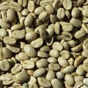 BioTrendy - Green Coffee - zielona kawa (coffea) PL - właściwości i zastosowanie