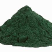 BioTrendy - Spirulina (Arthrospira platensis) PL - właściwości i zastosowanie