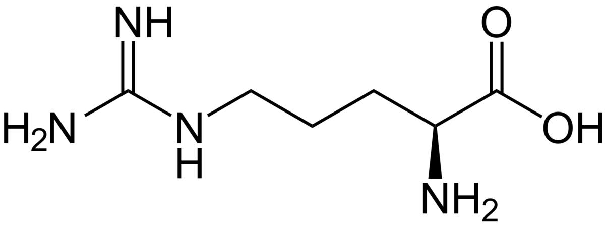 BioTrendy - L-arginina (Kwas 2-amino-5-guanidynopentanowy) PL - właściwości i zastosowanie