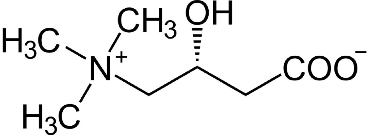 BioTrendy - L-karnityna (3-hydroksy-4-(trimetyloamonio)butanian) PL - właściwości i zastosowanie