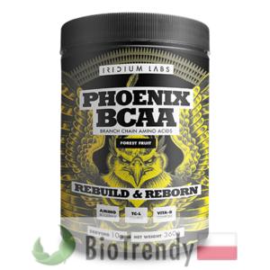 BioTrendy - Phoenix BCAA PL - odzywka na przyrost masy miesniowej – odzywka na mase miesniowa