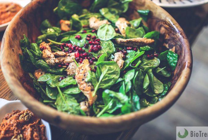BioTrendy - Dieta Paleo PL – na czym polega Jak stosować